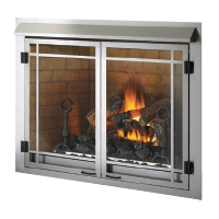 Napoleon Outdoor Fireplace